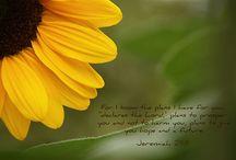 Bible Verses / by Hannah Brown