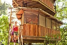 Tree Houses  / Every true gardener never wants to leave their creations/mother nature at the end of the day.  As children we gave ourselves permission to hang out in the trees and be with nature.  I think that is why I love tree houses.  As a child I spent hours in my swaying with the wind of the branches gazing out on my garden. / by Sustainable Seed Co.