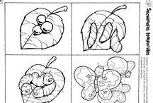 ο κύκλος ζωής της πεταλουδας