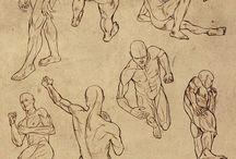 Drawing Human Models