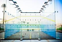 squash / tennis / badminton