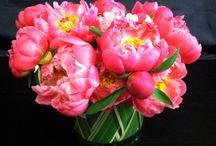 Happy Mother's Day! / by Katherine Schwarzenegger