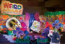 VBS (Weird Animals 2014) / 2014 Weird Animals VBS we cant wait to create a fun and vibrant look for the church this summer / by Lisa Wigger