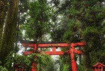 23 Japan