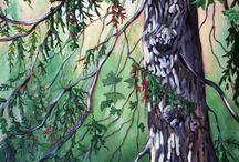 West Coast Trees / West Coast tree paintings - originals and prints