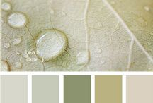 color home palate