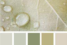 Color Me Beautiful / by Ashley Curcio