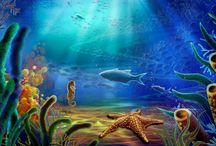 Ryby / Ryby  w morzu, rzece i w akwarium