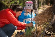 Metolius Preserve Fairy Houses / Fairy house building on a Deschutes Land Trust kid's outing.