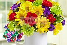 Send Fresh Flowers Internationally  / Send fresh flowers internationally for any occasion and make someone day special & memorial.