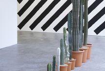 JARDIN | garden / by Diego Lamantía