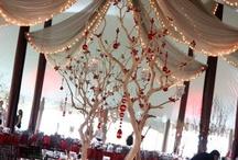 S & K Enchanted Winter Day / Wedding