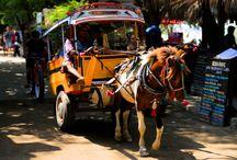 Trip to Bali & Gili / Trip to Bali & Gili, 2014