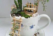plantas na xícara com escadas