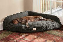 Κρεβάτια για σκύλους