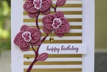 Climbing Orchids Stampin' Up!