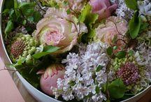 Blomster / Buketter, dekorasjoner osv.