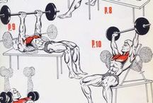 CHEST EXERCİSES