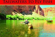 Fly fishing / by Tami Dakin