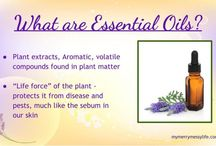 Essential Oils Webinars and Facebook Classes / by My Merry Messy Life