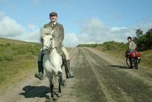 ¿Dónde cabalgar en caballo en México?