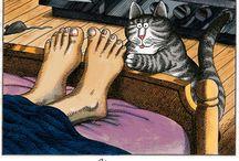 Klibans CAT
