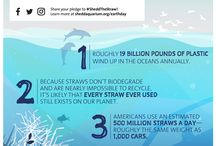 #SheddTheStraw & Single-Use Plastics / #SheddTheStraw and other single-use plastics with Shedd Aquarium this Earth Day and beyond. A single plastic straw might not seem like much, but the 500 million straws Americans use every day add up to a big problem for our oceans, lakes and rivers. These single-use plastics never disappear—and they harm the animals that call our waters home. Use #SheddTheStraw on Twitter or Instagram to take the pledge to stop using straws for a chance to win one of 10 sustainability swag kits.