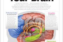 Brain Issues