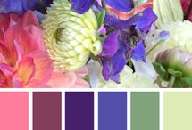 Colour Palette / Using colour combinations can be a daunting process. Turn to nature for inspiration.