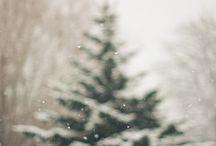 zima <3
