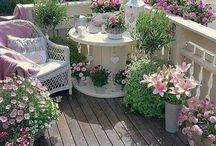 Kwiaty/ Balkon/ Taras