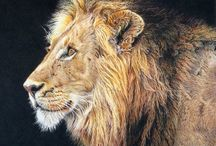 Realistic Wildlife Art / Realistic wildlife art