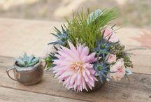 Flowers&Plants / by Miriam Miras