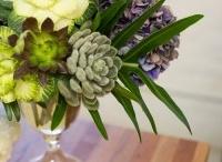 beautiful arrangements / by Fran Ginn