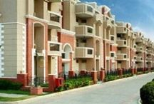 Ozone Park / Looking out for Ozone Park flats & appartments in Faridabad. Simply call us to book a visit.