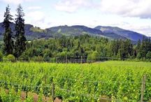 Sip & Savour / Sipping and Savouring our way through the delicious Cowichan Valley!
