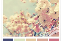 Colour pallets