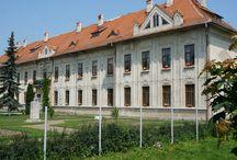 Liceul Eudoxiu Hurmuzachi, Radauti