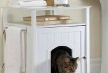 Cats / Kitty Clutter image research