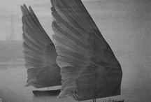 Левое крыло / Братство левой руки, размышления и динамика в искусстве, дизайне