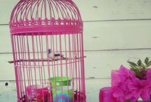Pink / by Chu ♡