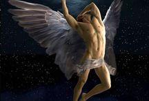 Angle - Engel