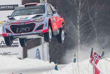 Rally Cars / by Rowan French