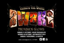 AWAKE The Doors / Banda Tributo The Doors Chile