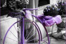 @ biciclette @