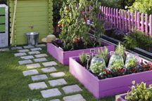 Outdoor : Potager