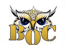 Berlin Owls Cheerleader / Wir sind die Cheerleader des SV Preußen Berlin e.V. Gemeinsam gründen wir uns neu und bauen unsere Teams auf.