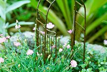 ⊱.ℱαᎥrƴ  ♕ ℱαɳ੮αsƴ ⊰ / ᘡ Fairy gardens ᘠ / by ✿⊱ ᎷᎯᏒᎥᏖᏕᎯ'Ꮥ ᎶᎯᏒᎠᎬN ⊰✿