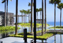 Resort style landscape
