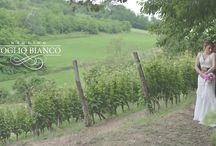 Fotografo di Matrimonio e Videomaker, Acqui Terme, Piemonte, Monferrato / Fotografo di Matrimonio e Videomaker, Acqui Terme, Piemonte, Monferrato